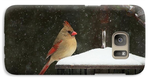 Snowy Cardinal Galaxy Case by Benanne Stiens