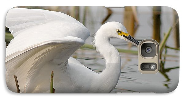 Galaxy Case featuring the photograph Snowy Egret by Doug Herr