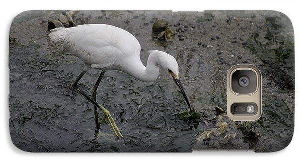 Galaxy Case featuring the photograph Snowy Egret Feeding by Jeanne Kay Juhos