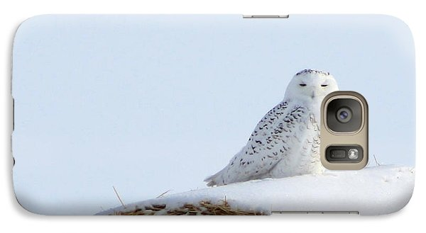 Galaxy Case featuring the photograph Snowy Owl by Alyce Taylor