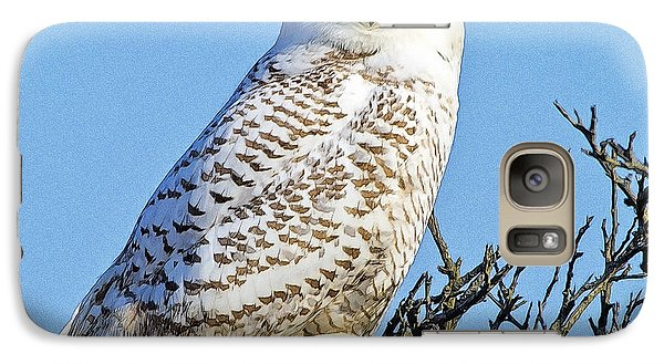 Galaxy Case featuring the photograph Snowy Owl by Constantine Gregory