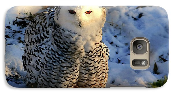 Galaxy Case featuring the photograph Snowy Owl by Larry Trupp
