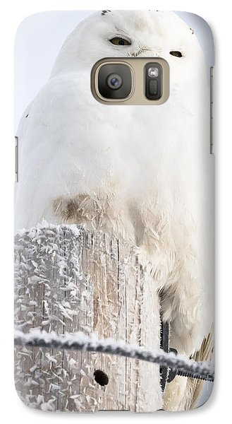 Snowy Owl Galaxy S7 Case by Ricky L Jones