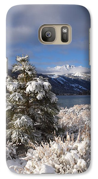 Galaxy Case featuring the photograph Snowy Pine  by Duncan Selby