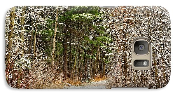 Galaxy Case featuring the photograph Snowy Tunnel Of Trees by Terri Gostola
