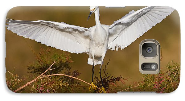 Galaxy Case featuring the photograph Snowy Wingspread by Bryan Keil