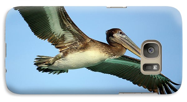 Galaxy Case featuring the photograph Soaring Pelican by Suzanne Stout