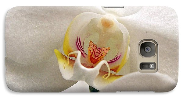 Galaxy Case featuring the photograph Soft Orchid by Kathi Mirto
