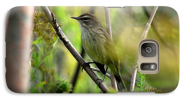 Galaxy Case featuring the photograph Songbird In The Glen by Kimberly Mackowski
