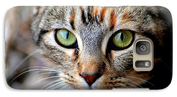 Galaxy Case featuring the photograph Soul Cat by Deena Stoddard