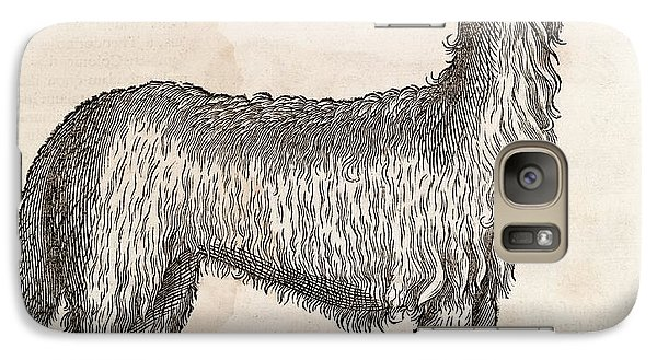 South American Camelid Galaxy S7 Case by Middle Temple Library