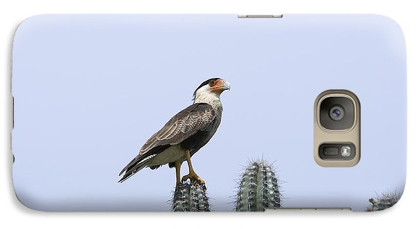 Galaxy Case featuring the photograph Southern Crested-caracara Polyborus Plancus by David Millenheft