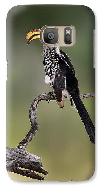 Southern Yellowbilled Hornbill Galaxy S7 Case
