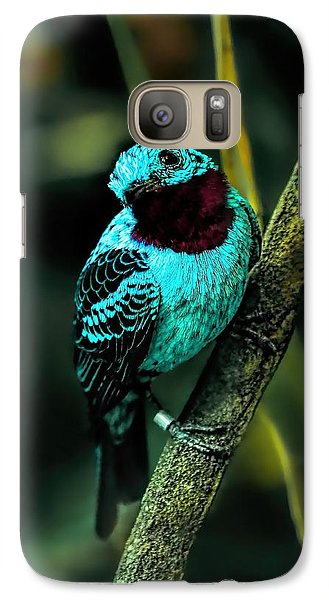 Galaxy Case featuring the painting Spangled Cotinga Turquoise Bird by Tracie Kaska