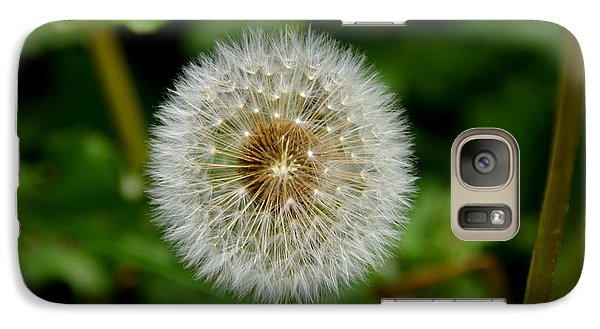 Galaxy Case featuring the photograph Sparkling Dandelion by Debra Martz
