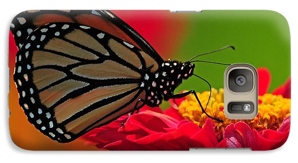 Galaxy Case featuring the photograph Speckled Monarch by Olivia Hardwicke