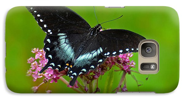 Galaxy Case featuring the photograph Spicebush Swallowtail by Rodney Campbell
