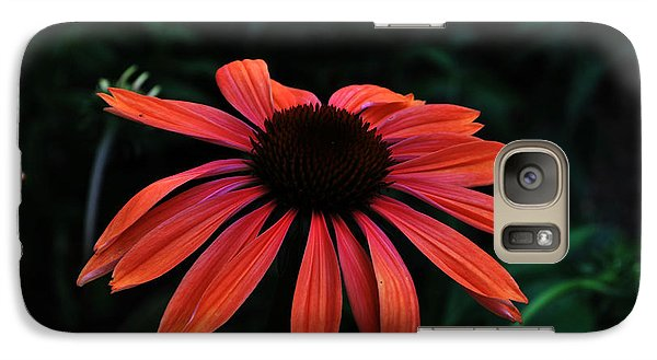 Galaxy Case featuring the photograph Spicy by Judy Wolinsky