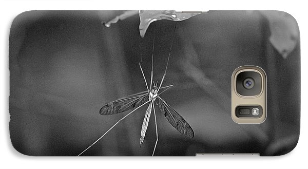 Galaxy Case featuring the photograph Spider Ins 83 by G L Sarti