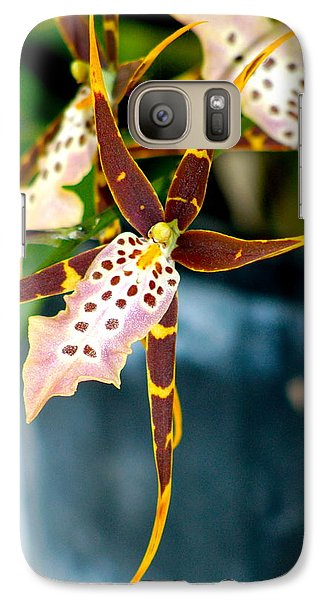 Galaxy Case featuring the photograph Spider Orchid by Lehua Pekelo-Stearns