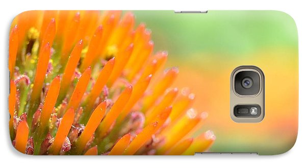 Galaxy Case featuring the photograph Spiked Beauty by Chad and Stacey Hall