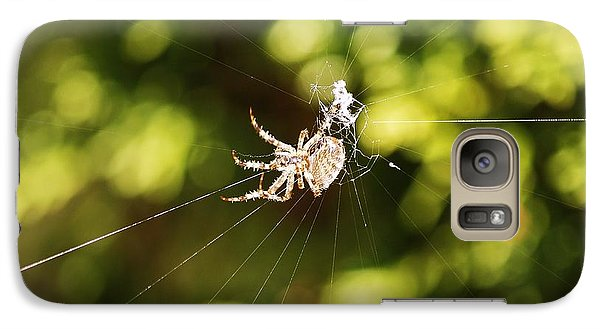 Galaxy Case featuring the photograph Spins A Web by Al Fritz