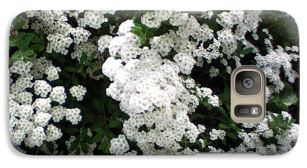 Galaxy Case featuring the photograph Spirea Bridal Veil by Barbara Griffin