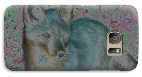 Galaxy Case featuring the photograph Spirit Fox by Aurora Levins Morales