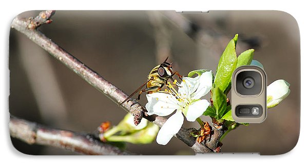 Galaxy Case featuring the photograph Spring Bee On Apple Tree Blossom by Ryan Crouse