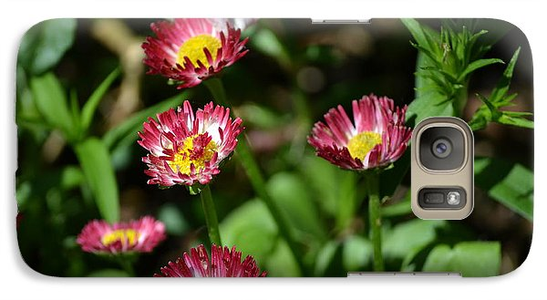 Galaxy Case featuring the photograph Spring Blooms by Tara Potts