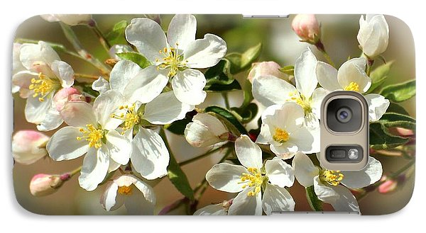 Galaxy Case featuring the photograph Spring Blossoms 2 by Lynn Hopwood