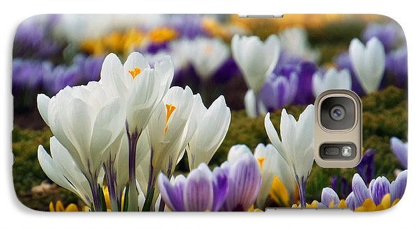 Galaxy Case featuring the photograph Spring Crocus by Dianne Cowen