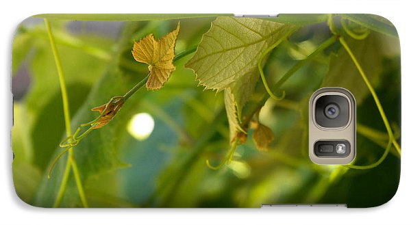 Galaxy Case featuring the photograph Spring Green Grape Vines by Adria Trail