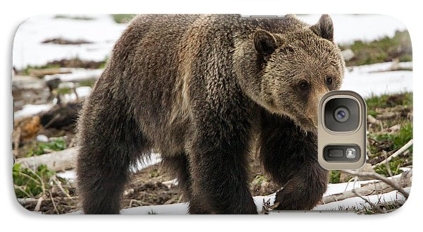 Galaxy Case featuring the photograph Spring Grizzly Bear by Jack Bell