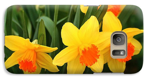 Galaxy Case featuring the photograph Spring Is Here by Lynn Hopwood