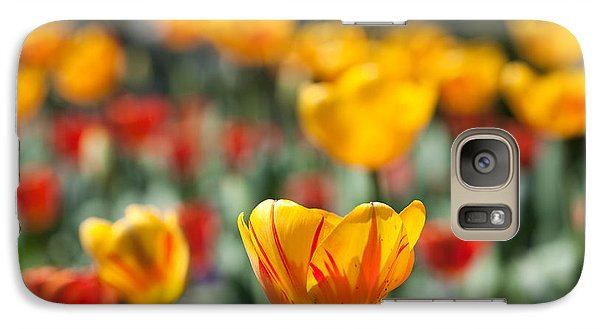 Spring Is Upon Us Galaxy S7 Case by Nathan Rupert