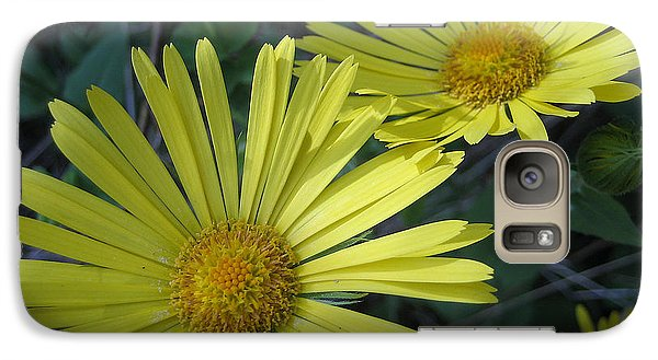 Galaxy Case featuring the photograph Spring Yellow  by Cheryl Hoyle