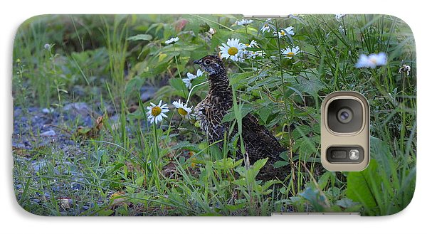 Galaxy Case featuring the photograph Spruce Grouse by James Petersen