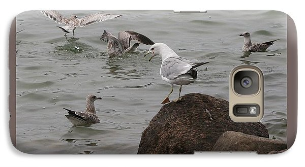 Galaxy Case featuring the photograph Squabbling Gulls-ii by Patricia Overmoyer