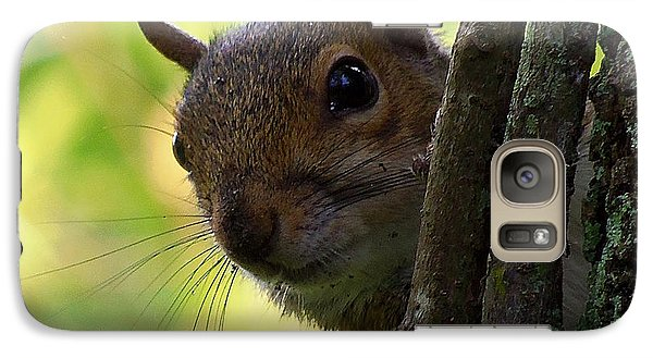 Galaxy Case featuring the photograph Squirrel 025  by Chris Mercer