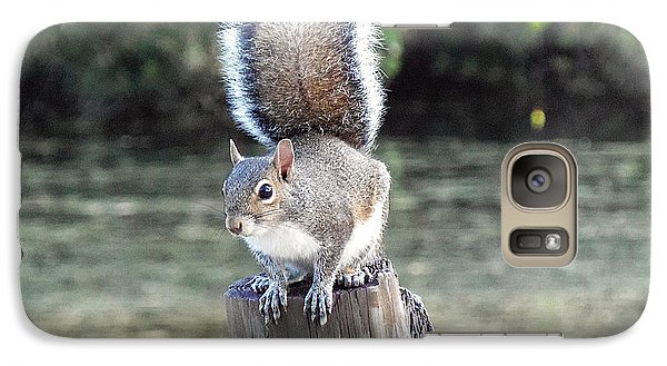 Galaxy Case featuring the photograph Squirrel 035 by Chris Mercer