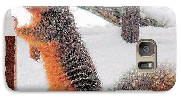 Galaxy Case featuring the photograph Squirrel Checking Out Seeds by Janette Boyd