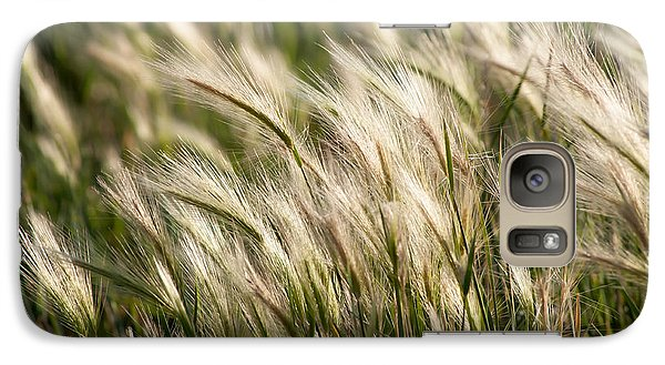Galaxy Case featuring the photograph Squirrel Grass by Fran Riley