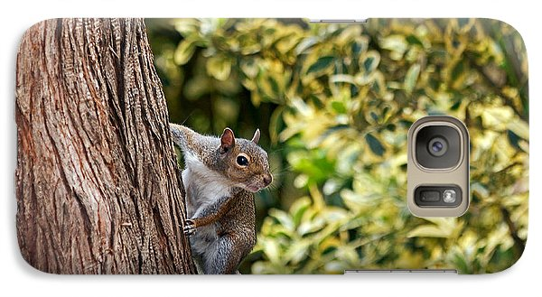 Galaxy Case featuring the photograph Squirrel by Kate Brown