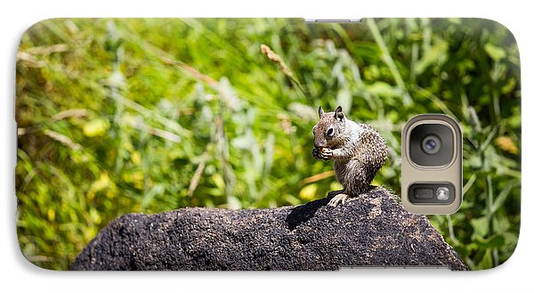 Galaxy Case featuring the photograph Squirrel Lunch by Mike Lee