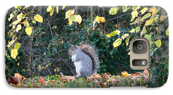 Galaxy Case featuring the photograph Squirrel Perched by Matt Malloy