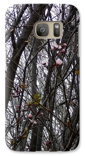 Galaxy Case featuring the photograph Spring Blossoms by Carla Carson