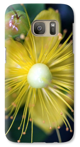 Galaxy Case featuring the photograph St. John by Debra Kaye McKrill