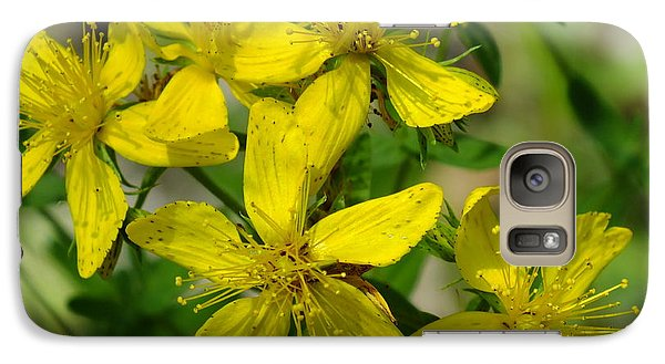 Galaxy Case featuring the photograph St John's Wort by Gene Cyr