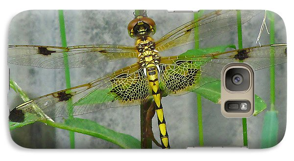 Galaxy Case featuring the photograph Stained Glass On The Wing by Deborah Johnson
